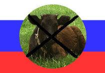 Мясо из России