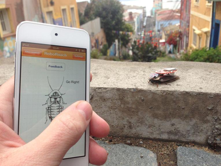 Приложение для управления роботом-тараканом