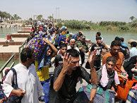 Беженцы из Рамади