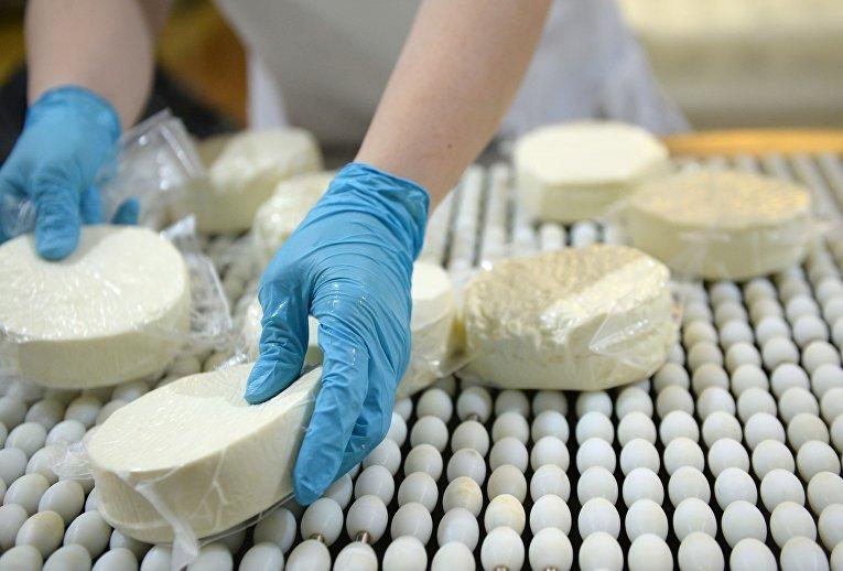 """Производство сыра на предприятии """"Молочная благодать"""" в Свердловской области"""