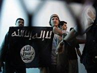 Боец из Йемена, подозреваемый в принадлежности к «Аль-Каиде»