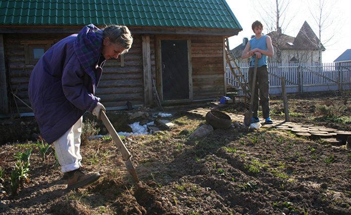 Дачники в Московской области