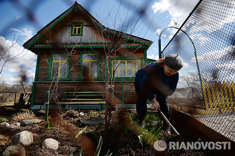 Открытие дачного сезона в Новгородской области