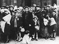 Евреи из Венгрии, убитые в газовой камере Освенцима