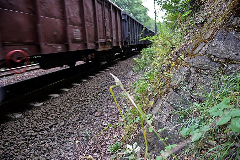 Поезд едет по территории, где предположительно может быть спрятан «золотой поезд нацистов»