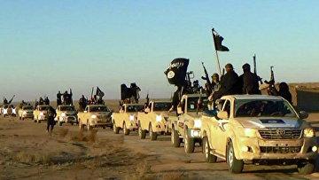 """Колонна автомобилей с боевиками """"Исламского государства"""" на пути из Сирии в Ирак"""
