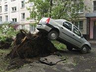 Последствия сильного шторма в Москве
