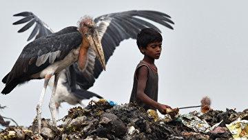Мальчик сортирует мусор на большой свалке в Гувахати, Индия
