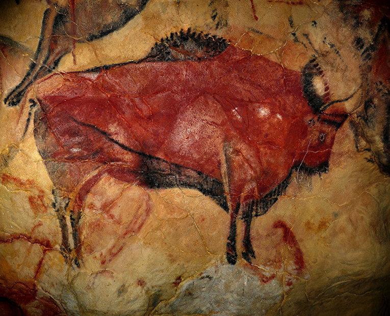 Изображение бизона из пещеры Альтамира