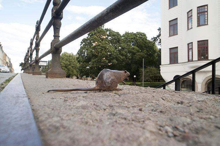 Скульптура крысы на Хорнсгатан в Стокгольме