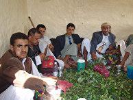Йеменцы жуют кат