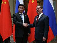 Премьер-министр РФ Д.Медведев встретился с председателем КНР Си Цзиньпинем