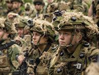 Военнослужащие армии Норвегии во время совместных учений НАТО в Латвии