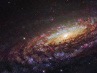 Фотография спиральной галактики NGC 7331, снятая телескопом «Хаббл»