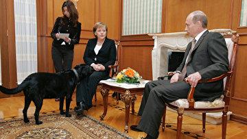 Ангела Меркель и Владимир Путин во время встречи в сочинской резиденции президента России