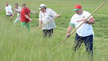 Александр Лукашенко обучил Жерара Депардье навыкам ручной косьбы во время визита актера в Белоруссию