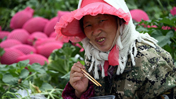 Обеденный перерыв во время работы на поле в Китае
