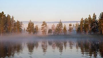Туманное утро на лесном озере в Республике Карелия