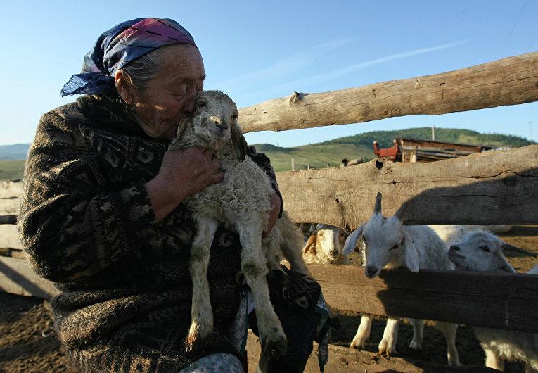 Стоянка чабанов-тысячников в местечке Кара-суг в Республике Тыва