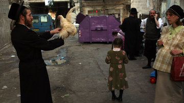 Кто мешает израильским женщинам делать аборты