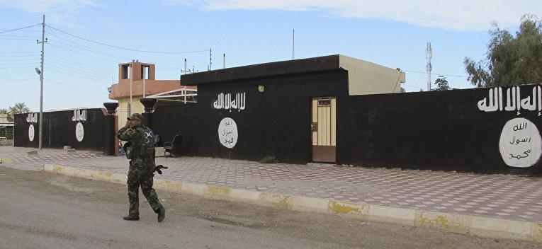 Один из городов, освобожденных иракской армией от боевиков Исламского государства