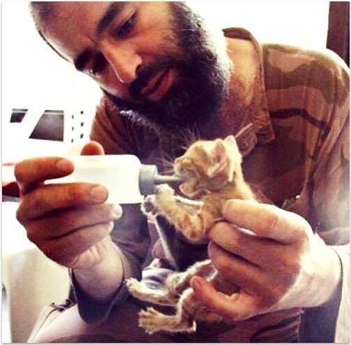 Сирийский повстанец кормит котенка