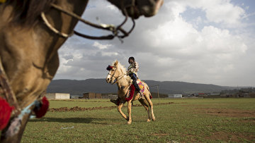 Мальчики на лошадях в Аддис-Абебе