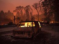 Лесной пожар в городе Парадайс, Калифорния