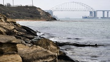 Суда проходят под аркой Крымского моста после возобновления судоходства в Керченском проливе