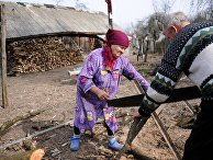 Валентина Бережняцкая (75 лет) и Иван Селуйко (78 лет) пилят дрова в деревне Савичи на территории Полесского радиационно-экологического заповедника в Белоруссии