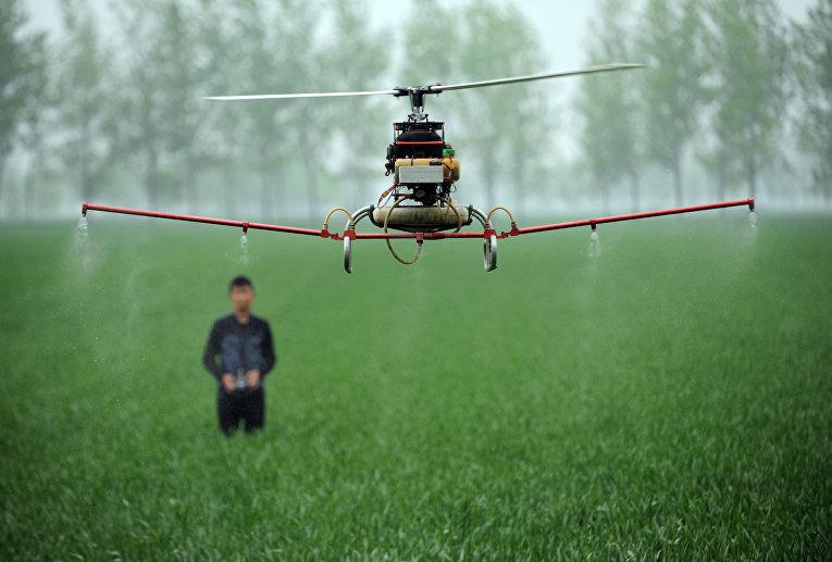 Дрон для распыления пестицидов на ферме в Бочжоу