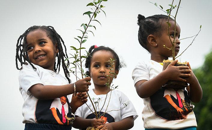 Дети принимают участие в мероприятии по посадке деревьев в столице Аддис-Абебе, Эфиопия