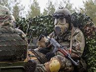 """Международные военные учения """"Summer Shield XIV"""" в Латвии"""