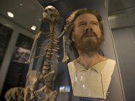 Скелет и реконструкция лица мужчины эпохи неолита, Великобритания