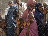 Беженцы в очереди за едой в Дадаабе, Кения