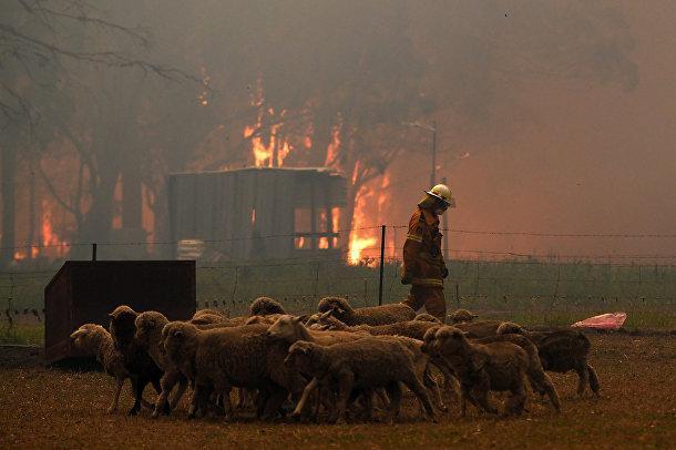 Пожарный недалеко от города Тахмур на юго-западе от Сиднея
