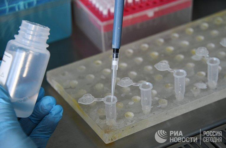 В Забайкалье поступила тест-система для определения антигена коронавируса