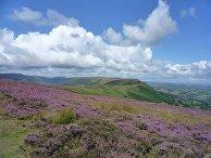 Природа Уэльса