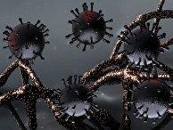 ДНК и коронавирус