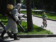 Дезинфекция в парке, Новосибирск