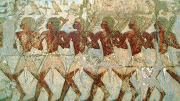 Торговая экспедиция Хатшепсут в страну Пунт
