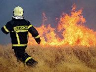 Сотрудник МЧС РФ на месте природного пожара