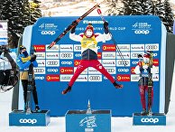 Лыжные гонки. Тур де Ски. Мужчины. Масс-старт