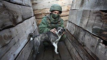 Обстановка в районе села Саханка на юге ДНР