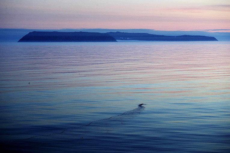 Острова Большой Диомид и Малый Диомид