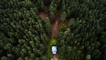 Часовня над источником «Святая вода» в национальном парке «Себежский» в Псковской области