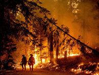 Лесные пожары в округе Пламас, Калифорния