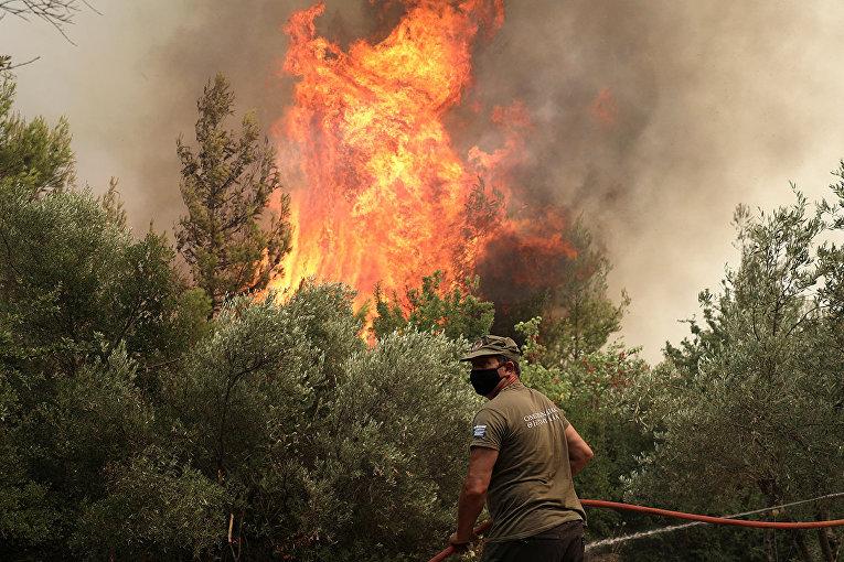 Пожарный ведет борьбу с огнем в деревне Авгария на острове Эвия. 10 августа.