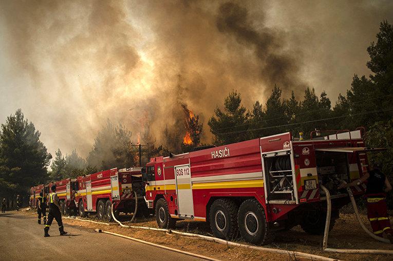 Греция. Пожарные из Словакии пытаются погасить пламя возле Авгарии