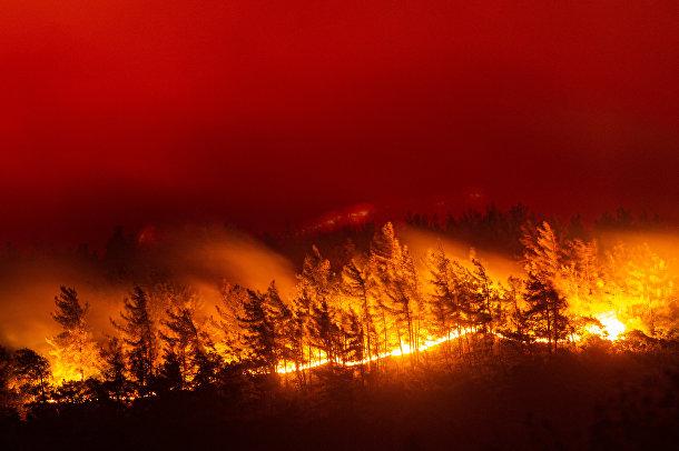Турция. Пламя уничтожает деревню Акчаяка в провинции Мугла на юго-западе страны